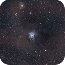 NGC 7023 La Nébuleuse de l'Iris,                                Victor