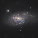 M 66 Galaxy,                                Jeffbax Velocicaptor