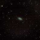 NGC 2903 - 11 marzo 2013,                                Giuseppe Nicosia