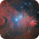 NGC 2264 - Cone & Fox Fur Nebulae (Chilescope processing competition),                                Jean-Baptiste Auroux