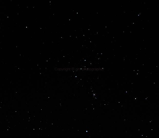 Orion Constellation,                                Giuseppe Petricca