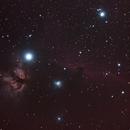 IC434,                                proteus5