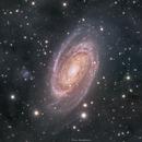 M81 LRGBHa with IFN,                                Girish