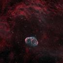 NGC-6888 (Crescent Nebula),                                Joel Shepherd