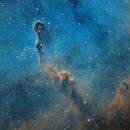 Elephant's Trunk Nebula in Hubble colours,                                urban.astronomer