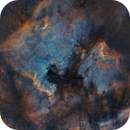 Mosaic • NGC 7000 • North America nebula • IC 5067 • Pelican nebula • SHO,                                Mikael De Ketelaere