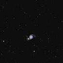 M51 the Whirlpool Galaxy,                                RonAdams