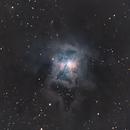 NGC 7023 - The Iris Nebula,                                Timothy Martin & Nic Patridge