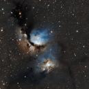 Messier 78,                                Logan Carpenter
