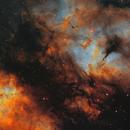 IC1318 remaster,                                Mirk