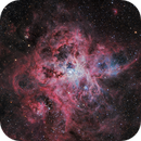 Tarantula - NGC 2070,                                Warren A. Keller