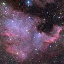 NGC 7000 - The North America Nebula,                                SirSocket