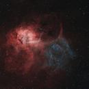 Sh2- 132, The Lion Nebula,                                Ives Leutenegger