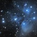 The Pleiades open cluster in Taurus,                                Francesco Meschia