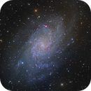 M33,                                Michael Feigenbaum