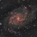 M33,                                Mike Kline