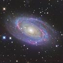 M81,                                Minseok.Chang