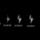 ISS,                                Siegfried