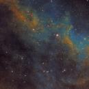IC1318 The Butterfly Nebula,                                niteman1946