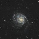 M101,                                oculum