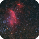 Prawn Nebula - IC 4628,                                Peter Pat