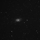 NGC2403,                                Jaroslaw Burczynski