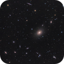 NGC 4365 group,                                Toshiya Arai