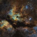Sadr Butterfly Hubble Palette,                                Monkeybird747