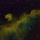 IC 2177 Seagull Nebula,                                bigeastro