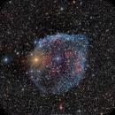 SH2-308 Dolphin Head Nebula,                                brad_burgess