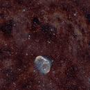 Crescent Nebula HOO,                                Allen Koenig