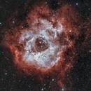 Rosette Nebula NGC 2244,                                photoman888