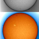 Sol 31-5-21 Ha,                                Steve Ibbotson