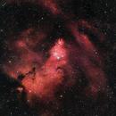 NGC2264 | Cone Nebula and Christmas Tree Cluster,                                Tom Hitchen