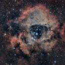 Nebulosa Roseta (Rosette Nebula),                                Alfredo Beltrán