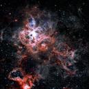 NGC 2070 Tarantula Nebula,                                James Baguley