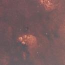 SH2-8 The Cat's Paw Nebula,                                David Wright