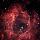 NGC2237,                                Daniel