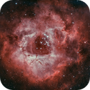 C49 Rosette Nebula Bi-Colour,                                midnight_lightning