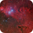 NGC2264 Cone Nebula ,                                Francesco Wueest