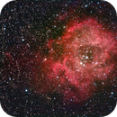 NGC 2237 Rosetta,                                pigamma