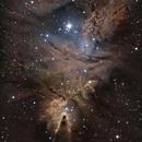 NGC2264,                                Donato Calo