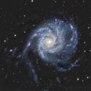 M101,                                jbconti