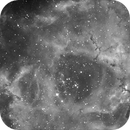 My first H alpha image,                                Hornisse