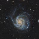 The Pinwheel Galaxy,                                Joey Conenna