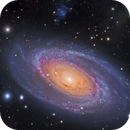 A Jewel in the night sky - M81,                                Julian Shroff