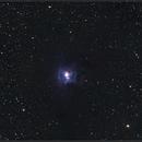 "NGC 7023 ""Iris nebula"" in Cepheus,                                Roland Oeyen"