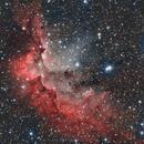 NGC7380 - Wizard Nebula in Ha-Oiii-LRGB,                                Tim Hutchison