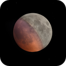 Total Lunar Eclipse of 21.01.2019,                                Alessandro Biasia