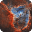 IC1805 with SV503 in BiColor,                                pmneo